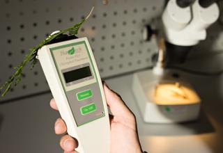 Chlorophyll fluorimeter handheld